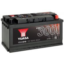 YBX3019